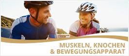 Muskeln, Knochen und Bewegungsapparat